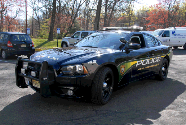 Police car graphics